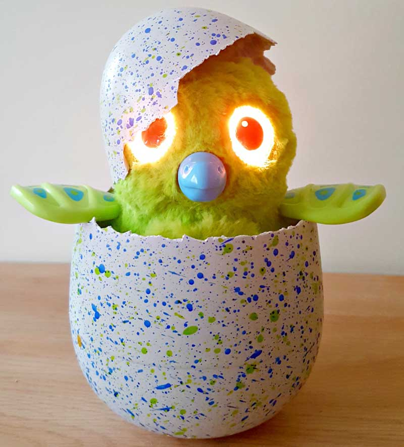 hatchimals-toy-best-christmas-toy-top-10-christmas-toys-hatched-egg-penguala-owlicorn-bearekette-draggle-burtle